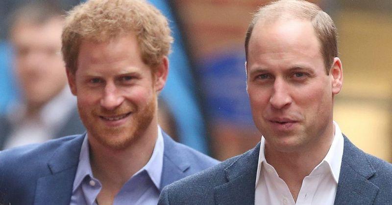 «Серый кардинал» принц Гарри провернул идеальную аферу, чтобы занять престол вместо брата