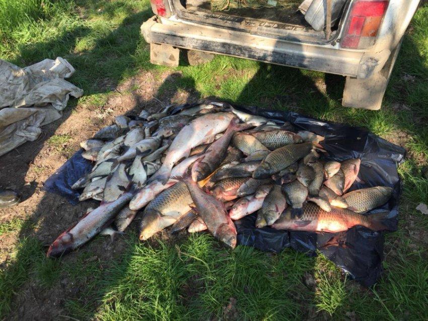 Житель Темрюкского района может лишиться свободы за незаконную добычу водных биологических ресурсов