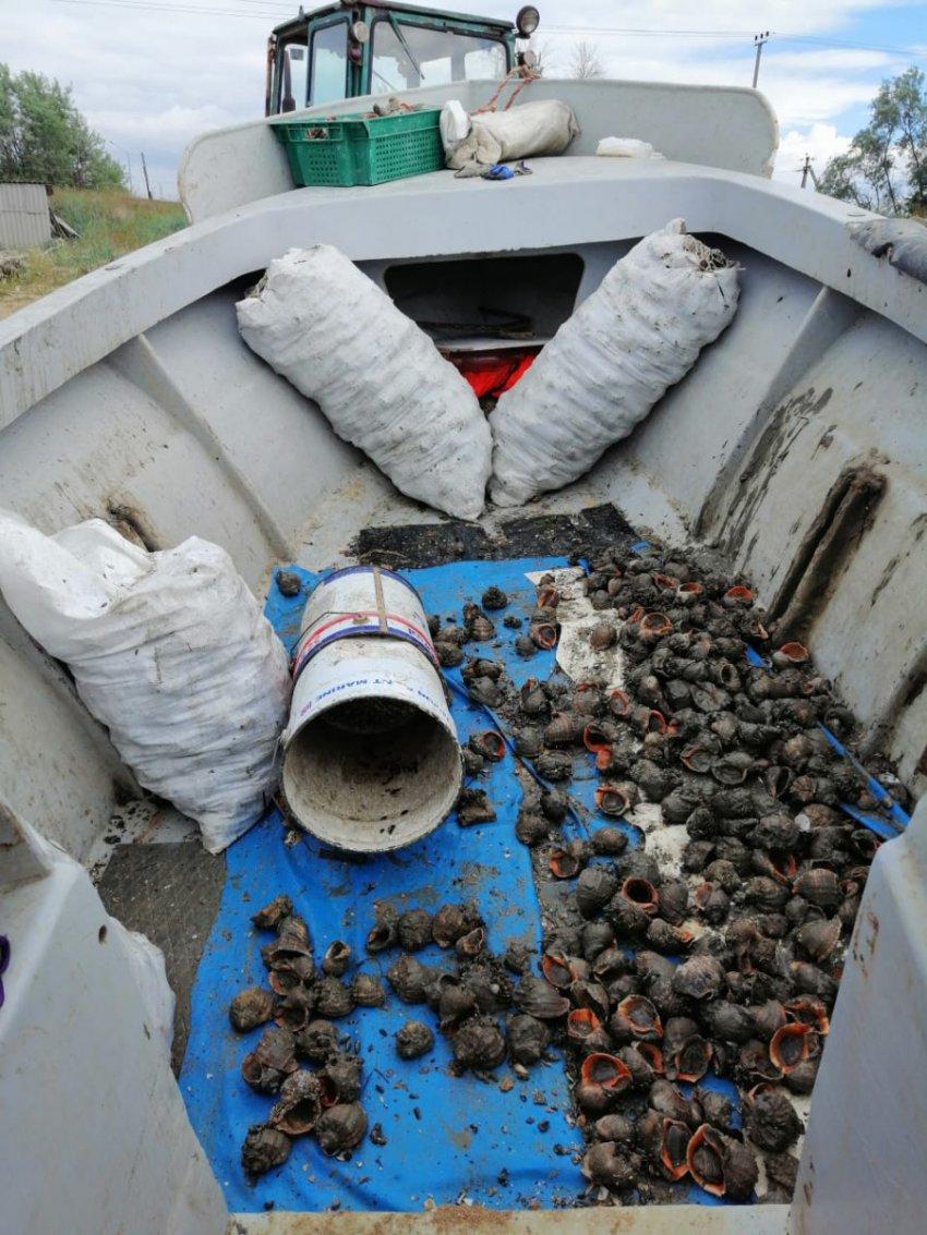 Жители Крыма задержаны за нарушение правил рыболовства