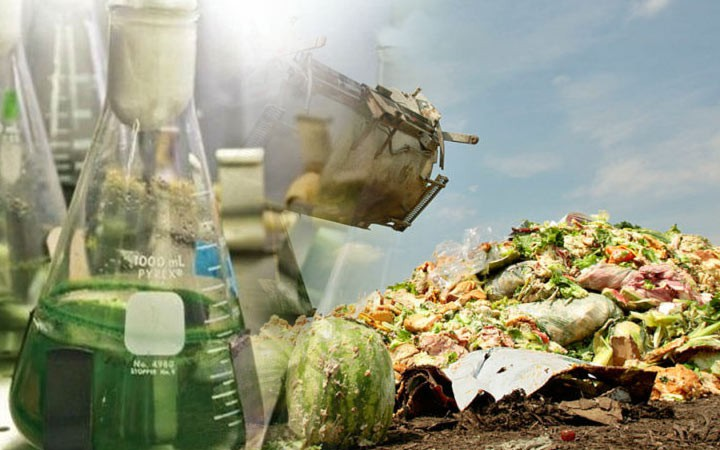 В России хотят запретить уничтожать продукты, пригодные к потреблению