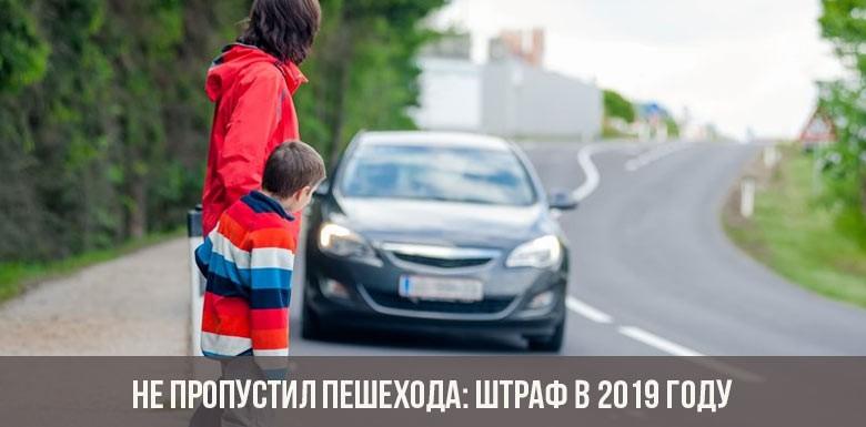 Не пропустил пешехода: штраф в 2019 году