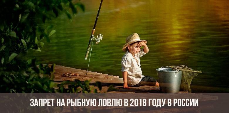 Запрет на рыбную ловлю в 2018 году в России