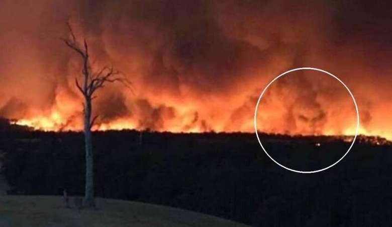 В пламени лесного пожара Австралии запечатлели