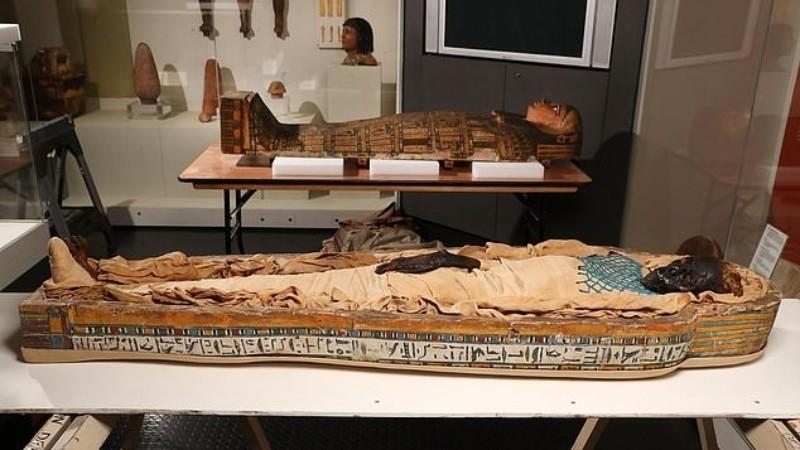 Установлена причина смерти египетской принцессы Такабути