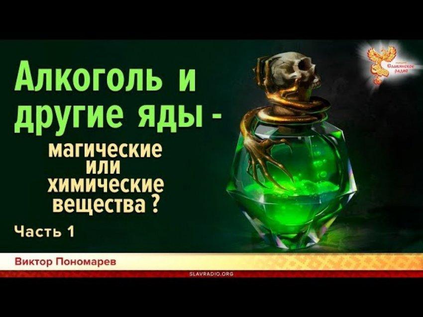 Алкоголь и другие яды - магические или химические вещества? Виктор Пономарев. Часть 1