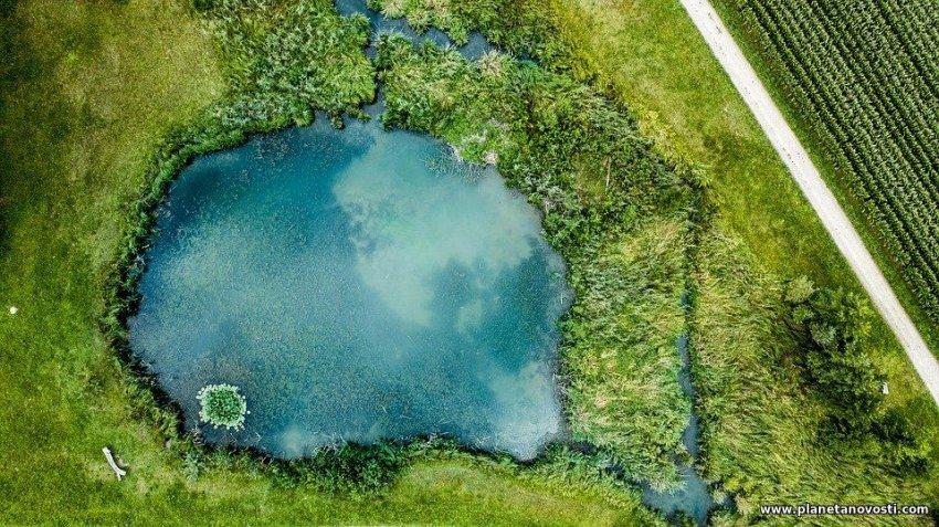 Глобальное потепление приведет к тому, что леса за месяц станут озерами