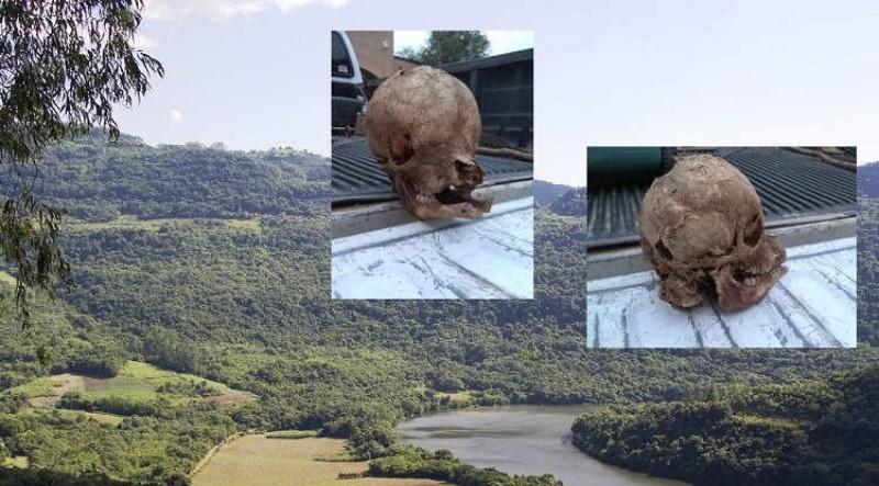 В Техасе на ранчо обнаружили очень странный череп: в Сети появилось фото находки