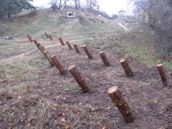 Какой смысл хранят «пирамиды» в российских лесах?