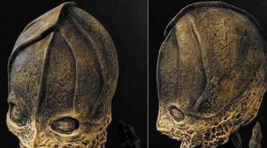 Ребенок-мутант или настоящий инопланетянин: кем же на самом деле был Алешенька?