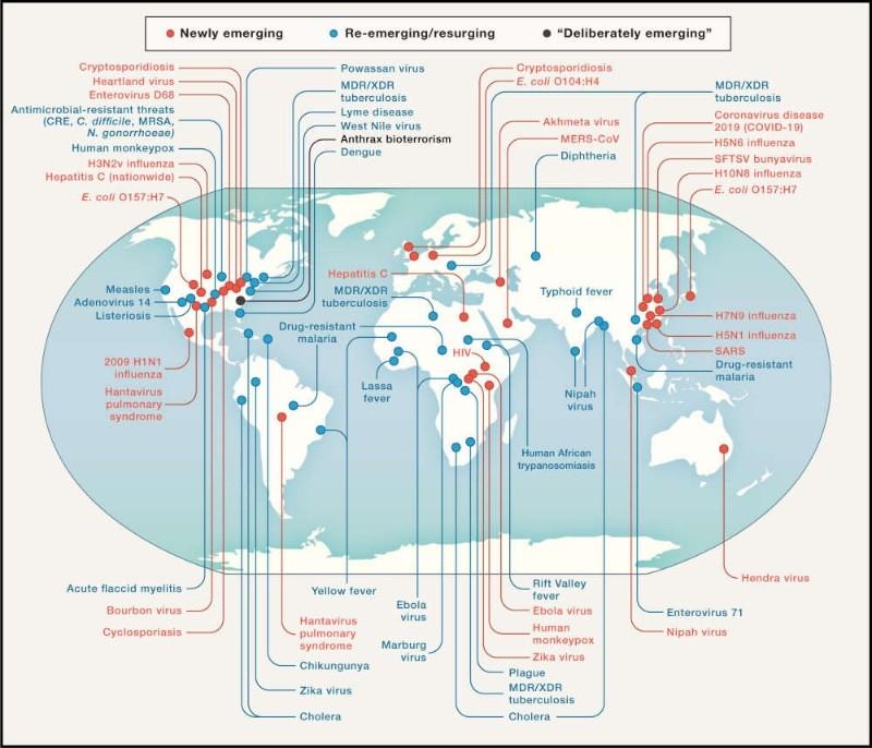 Со второй волной коронавируса могут прийти и другие болезни
