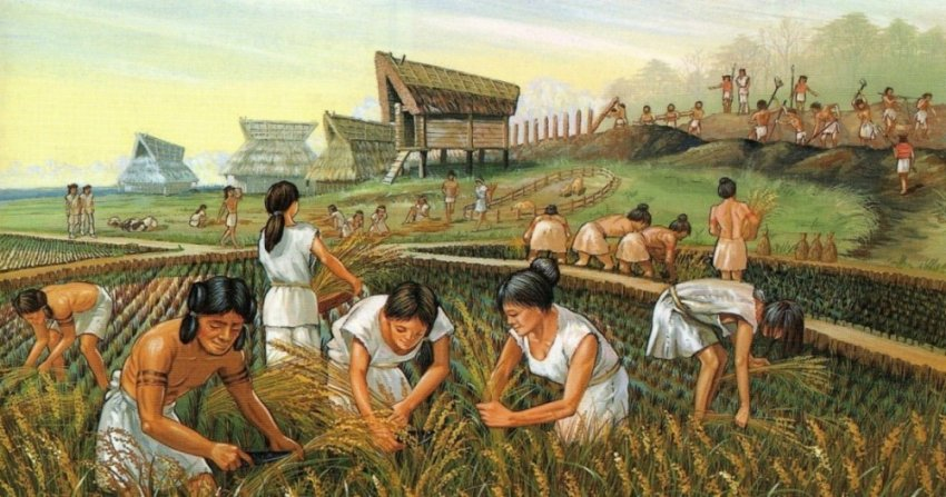 Зачем древние люди перешли на земледелие?