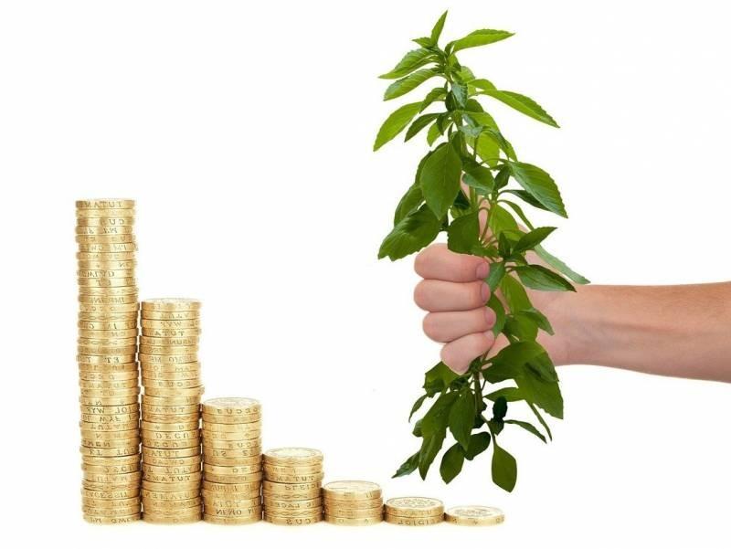 Можно ли сохранить и приумножить сбережения в 2021 году