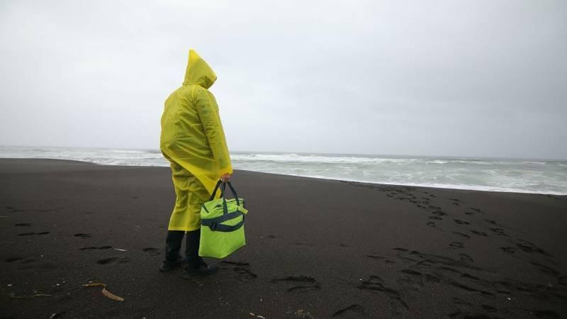 Причины, по которым на берега Сахалина выбросилась сельдь и другие данные, касающиеся этого