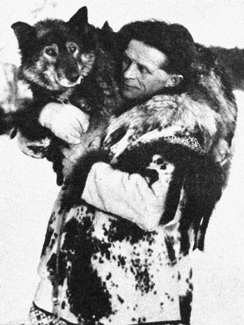Как собака-герой Балто спасла человеческие жизни