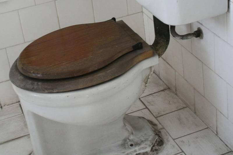 Конкурс на худший школьный туалет России: победителю обещают бесплатный ремонт