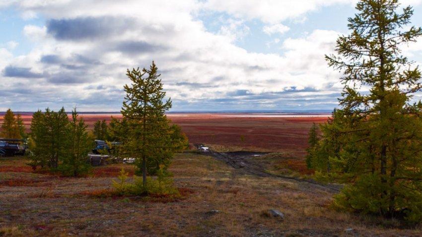 Жителям Мурманской области предложили новые условия программы «Арктический гектар»