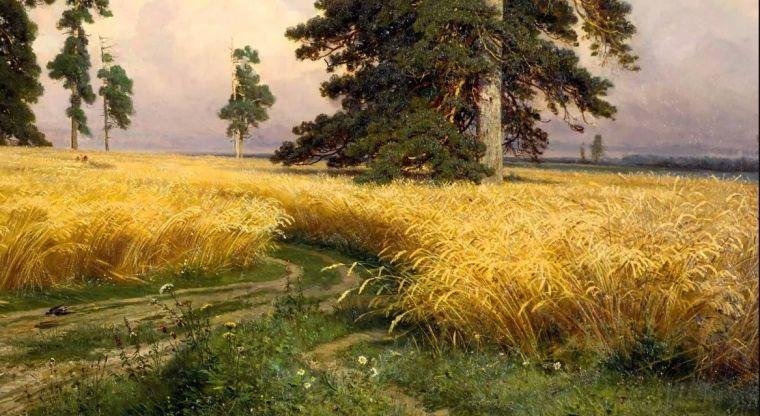 Народные приметы 20 июня, в день Федота Урожайника