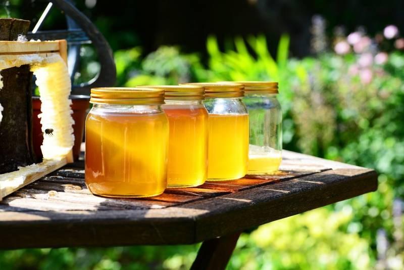 Праздник Зосима-пчельник в народе отмечают 2 июля 2021 года