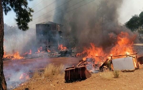 Лесные пожары в Турции не снизили турпоток из России