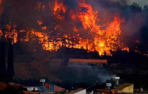 Эксперты оценили ситуацию с туристами в Турции на фоне пожаров