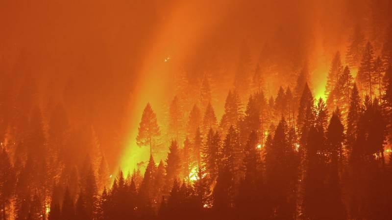 Пожары в Греции накаляют обстановку в стране