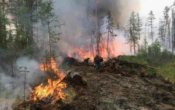 В МЧС заявили о сокращении площади лесных пожаров в Якутии на треть
