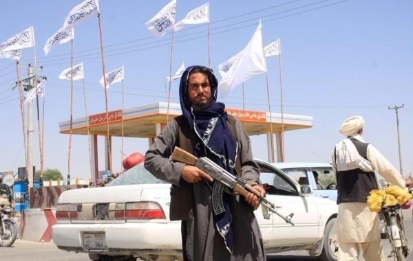 МИД России заявил о непризнании талибов властями Афганистана