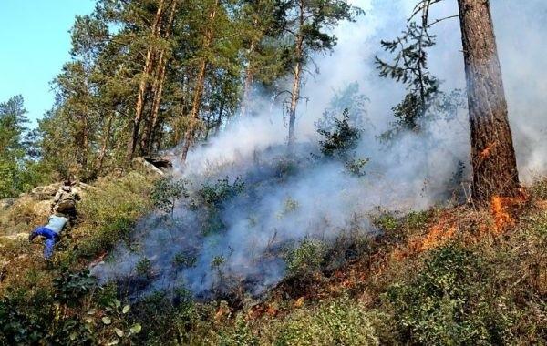 В Башкирии лесной пожар подбирается к городам