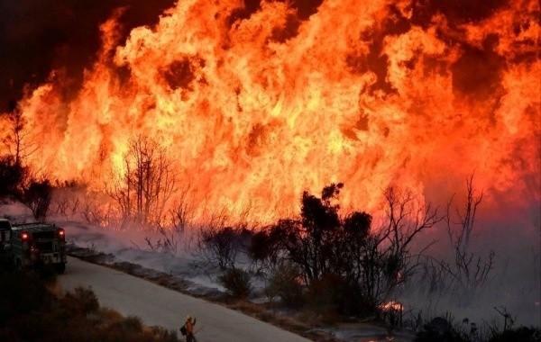 Нижегородскую область накрыло дымом от лесных пожаров