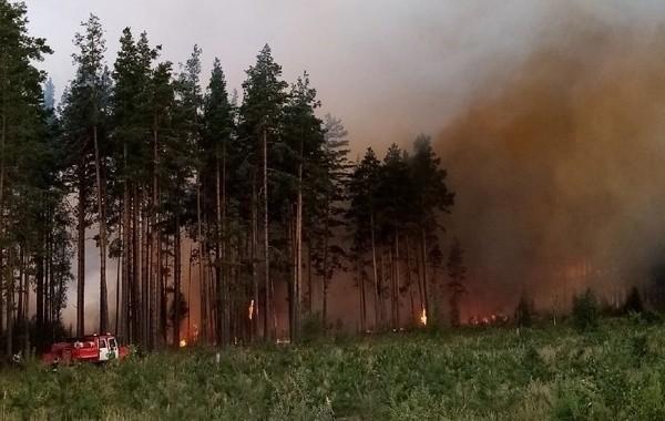 В Марий Эл продлен режим ЧС из-за лесных пожаров