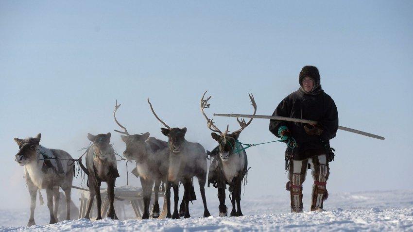 Смертельные деликатесы северных народов